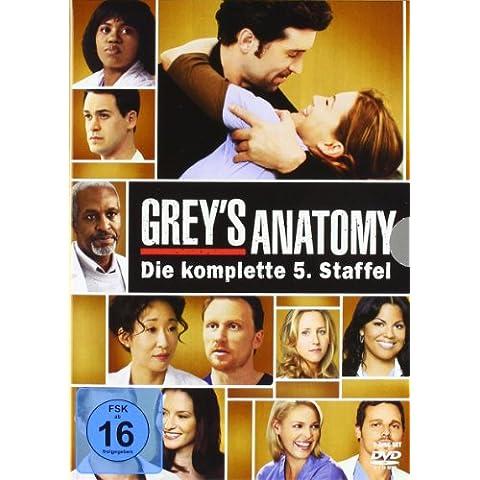 Grey's Anatomy: Die jungen Ärzte - Die komplette 5. Staffel