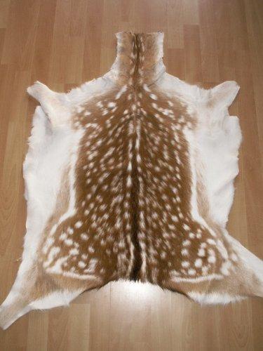 DAMWILDFELL Damwild echtes Fell Dekoration 100-120cm