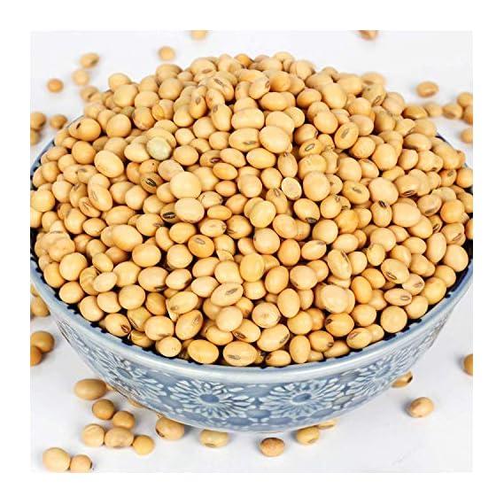Being Marwari Soybeans (SOYA Bean)| High Protein | (Premium Quality).