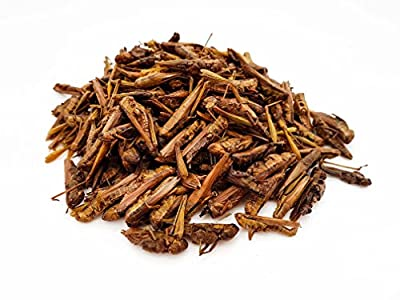 Heron's Pet World HERONS Natural Dried Grasshoppers BEARDED DRAGON GECKO TURTLE REPTILE BIRD FOOD from Heron's Pet World Ltd