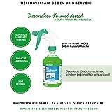 bio-chem® BIO URIN ATTACKE Geruchsentferner bei Katzenurin - 2