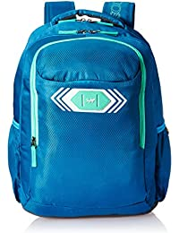Skybags Polyester 32 Ltrs Blue Casual Backpack (BPVIBFS2BLU)