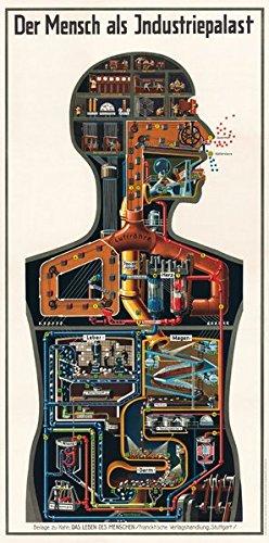 Kahn, F: Mensch als Industriepalast