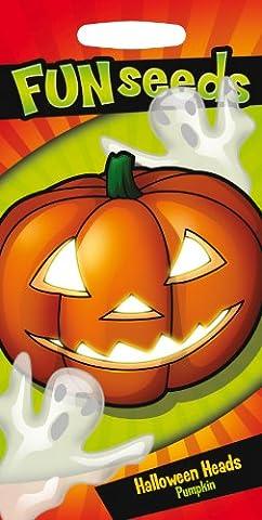 Mr. Fothergill's 18027 Halloween Heads Pumpkin Fun
