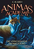 Animas Academy
