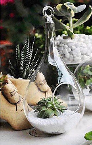 Jarrones de Vidrio Colgante de Florero Botella Cono Decoración Pared Flores Plantas