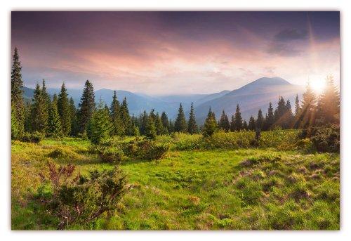 m (F-218) Grüne Wiese mit umstehendem Wald im Hintergrund imposante Gebirge und die Sonne strahlt in ihrem Glanz (Lieferung gerollt!) (Gras Fotografie-hintergrund)