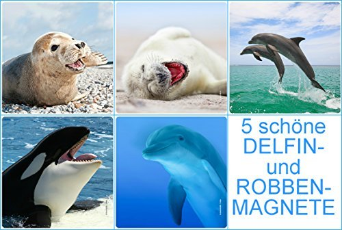 Kühlschrankmagnete Set : Magnet robbe einfach finden auf magnete 24.de!
