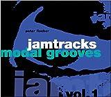 Jamtracks: Modal Grooves, Volume 1