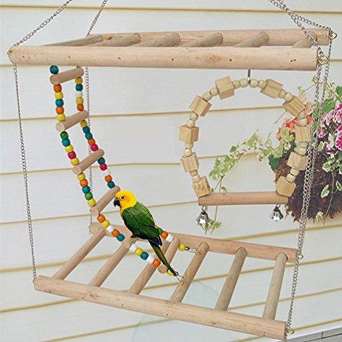 Vogel Holz Double Sitzstange Leiter biegbarer Leiter und Swing Sitzstange Sets Toys für Vogel Papagei Ara African Greys Wellensittiche Sittiche Nymphensittiche Kakadu Sittiche Unzertrennliche Finch Sitzstange