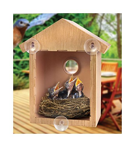 clear-window-bird-feeder-house-see-through-nest-viewing-perspex-seed-glass