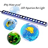 Roleadro Led Aquarium Beleuchtung 18 x 3W for Aquarium Pflanzen Korallen und Fische in Meerwasser fische Tank mit Netzkabel Größe 55CM Blau und Weiß Farbe(54 Watts)