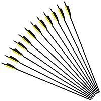 """Funtress 12 piezas 30 """"Fibra de carbono 3"""" / 4 """"Flecha pluma de caza Flechas con puntos de campo Puntas reemplazables para arco recurvo y arco compuesto Dirigido o caza"""