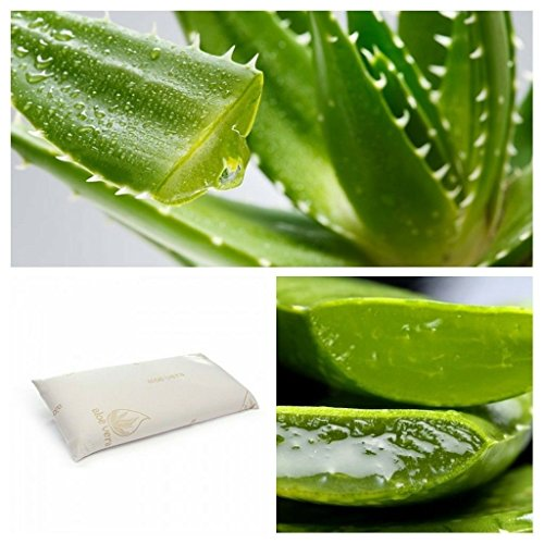 CONFORT HOME M.T. Almohada Visco-elástica Aloe Vera 100% Mini 42 x 25 Cm Viaje