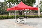 Gazebo Tent 10 x 10 feet / 3 x 3 meter -...
