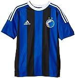 adidas Kinder Trikot FC Copenhagen Auswärts, Power Blue/Black/White, 176, AC5471