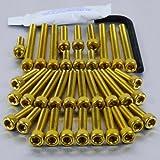 Aluminium Engine Kit XV1100 Virago Gold