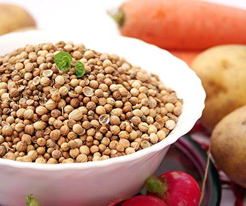 Bobby-Seeds Kräutersamen Koriander, Jantar Portion