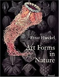 Art Forms in Nature: Prints of Ernst Haeckel by Olaf Breidbach (1998-08-01)