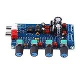 HIFI OP-AMP Tonabstimmverstärker NE5532 Vorverstärker Lautstärkeregler Preamp Board