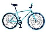 Helliot Bikes Erwachsene Fahrrad Single Speed Fixie Tribeca H27 Bike, Grün, M
