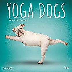 Yoga Dogs - Joga-Hunde 2019 - 18-Monatskalender: Original BrownTrout-Kalender [Mehrsprachig] [Kalender]