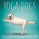 Yoga Dogs - Joga-Hunde 2019 - 18-Monatskalender (Wall-Kalender)
