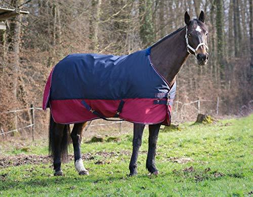 Amesbichler Pferde Outdoordecke Weidedecke Equitheme TYREX 1200 Denier 50g Füllung, wasserdicht, atmungsaktiv, Kreuzgurte, Schweiflatz, 165 cm