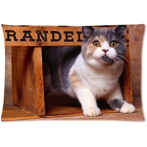 Scared Cat Pillowcase/Copricuscini e federe Custom Pillow case/Copricuscini e federe Cushion Cover 20 X 30 Inch Two Sides