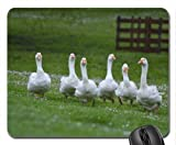 Goose attack Mouse Pad, Mousepad (Birds Mouse Pad)