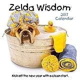 Zelda Wisdom 2017 Wall Calendar by Carol Gardner (2016-07-05)