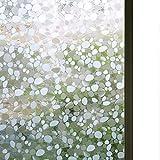 Riotis - Lámina autoadhesiva para Ventanas, lámina de Vidrio Esmerilado, Opaca, protección Visual, Anti UV, estática, para Oficina o casa, Mate, 45 x 100 cm