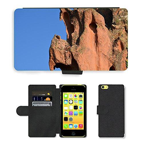 Just Mobile pour Hot Style Téléphone portable étui portefeuille en cuir PU avec fente pour carte//m00139567Rock formes Érosion Pierre/oiseaux/Apple iPhone 5C