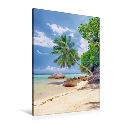 Premium Textil-Leinwand 60 cm x 90 cm hoch, Glitzernde, ruhige Bucht mit malerischen Palmen und Felsen bei Anse a la Mouche | Wandbild, Bild auf a la Mouche, Mahe, Seychellen (CALVENDO Orte)