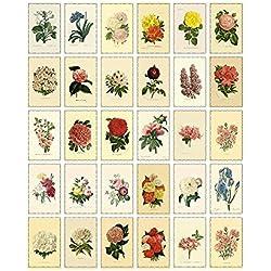 Zhi Jin 30pcs de tarjetas postales Vintage de flores en blanco de correo Postal unidades con citas caja para la recogida de regalo