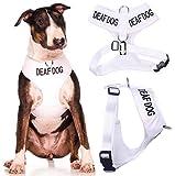 Deaf Hund (Hund Hat Limited/keine Gehör) weiß Farbe Kodiert non-pull Vorder- und Rückseite D-Ring gepolstert und wasserdicht Weste Hundegeschirr verhindert Unfälle durch vorwarnen anderer Hunde in Advance (große Hals bis 43cm Brust 48-72cm)
