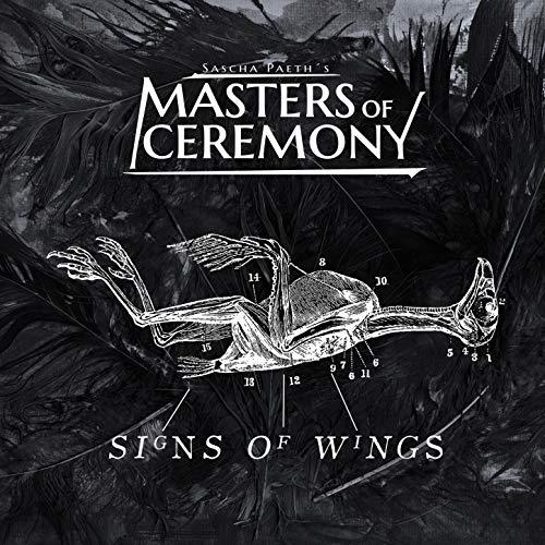 Signs of Wings