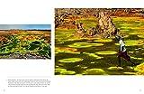 Lo-spettacolo-della-natura-Gli-elementi-che-hanno-plasmato-la-terra-Ediz-illustrata
