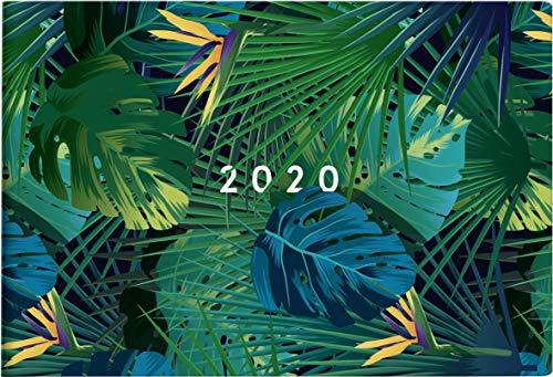 rido/idé 701750701 Taschenkalender Septimus (2 Seite = 1 Woche, 152 x 102 mm, Grafik-Einband Tropical, Kalendarium 2020) -