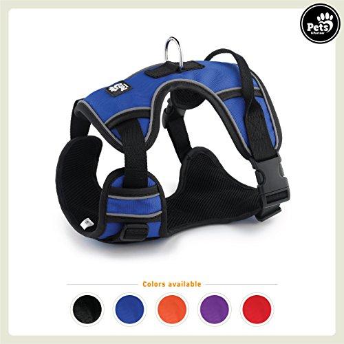 Pets&Partner® Hundegeschirr Outdoor, reflektierendes Geschirr in verschiedenen Farben für mittelgroße bis große Hunde, L, Marine Blau