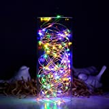 100 LED String Fairy Lights 10M with Remote Control, SATUBROWN Dimmable Copper Wire Star Starry Light with Adapter for Christmas Jar Table Wedding Party Valentines Decoration (Multicolor, Plug in)