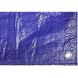 Catral 56010013 - Toldo reforzado gramaje, 0.1 x 400 x 600 cm, color azul