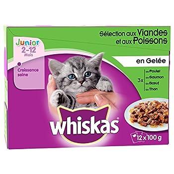 Whiskas - Repas en Gelée Junior aux pour Chaton - 12x100g