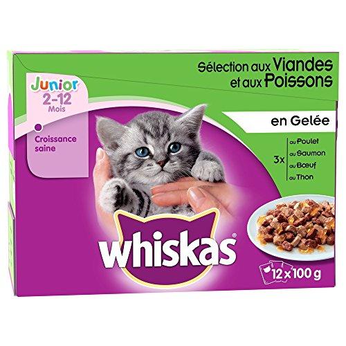 whiskas-repas-en-gelee-junior-aux-pour-chaton-12x100g