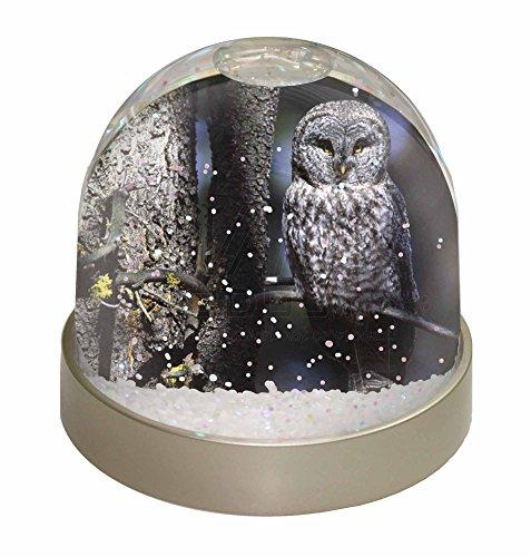 Schneekugeln Eule (Advanta Baum Eule Schneekugel Weihnachten Geschenk, mehrfarbig, 9,2x 9,2x 8cm)
