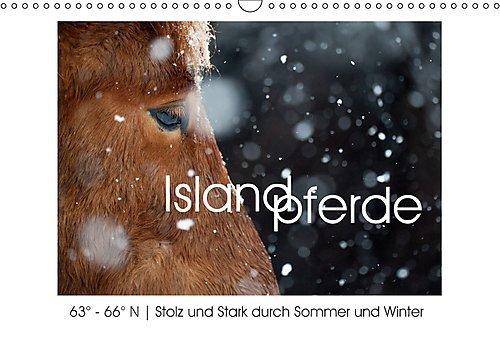 Preisvergleich Produktbild Islandpferde - Stolz und Stark durch Sommer und Winter (Wandkalender 2017 DIN A3 quer): Islandpferde, fotografiert in ihrer Heimat: 63° - 66° N. (Monatskalender, 14 Seiten ) (CALVENDO Tiere)
