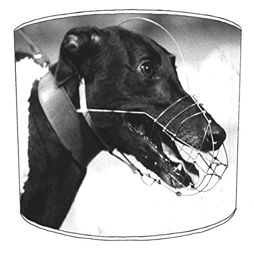 12-inch-ceiling-greyhound-racing-lampshade-2-by-premier-lampshades