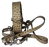 Fronhofer Hundehalsband + Leine Set für Hunde Echtleder Exklusives Leder Straussenoptik Halsband + Leine Set Passend, 18283, Farbe:Taupe, Größe Hundehalsband:One Size