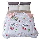 GJFeng Koreanische Quilt Winter Dicke warme doppelte Quilt Student Quilt 1,5 m * 2,0 m, 2,0 m * 230 cm, 2,2 m * 2,4 m mit Kern (Color : H, Size : 2.0m*2.3m)