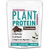 Vegan Protein Powder (1kg) with Organic Plant Protein | High in Iron, Magnesium & Zinc | No Added Sugar | Gluten Free | Dairy Free